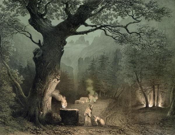 """Résultat de recherche d'images pour """"foret des druides"""""""